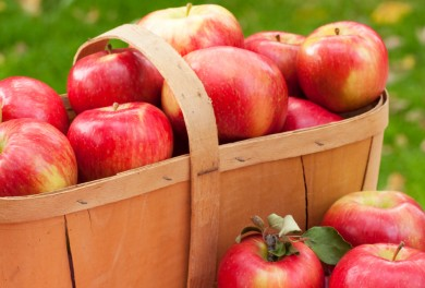 Autumn Apple recipes kids can make