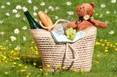 Teddy Bear Picnic Activities for July 10th